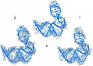Ein Beispiel dafür, wie wichtig die richtige Wahl der Parameter bei der Phasierung ist (Bild von Dr. Marco Glühmann). Auch der Laie kann erkennen, daß die Modellierung der linken Dichte garantiert leichter fällt alls bei den beiden Anderen.