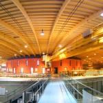 Die Hallenkonstruktion ist aus Holz.